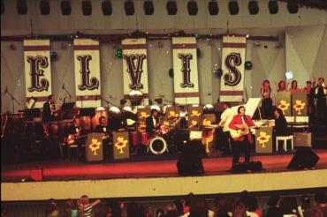 Elvis_37