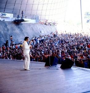 Elvis_66